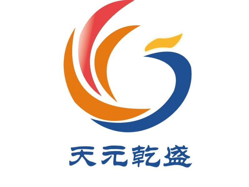 深圳市天元乾盛投资有限公司